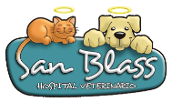 Clinica Veterinaria Armenia Hospital Veterinario San Blass