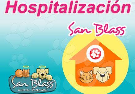hospitalizacion_veterinaria_armenia_URGENCIAS